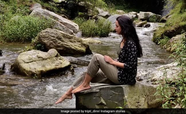 'My Feet Are Normal': Bulbbul Star Tripti Dimri Captions Pic Perfectly